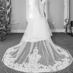 David's Bridal Dresses - Wedding dress, medium petticoat and veil